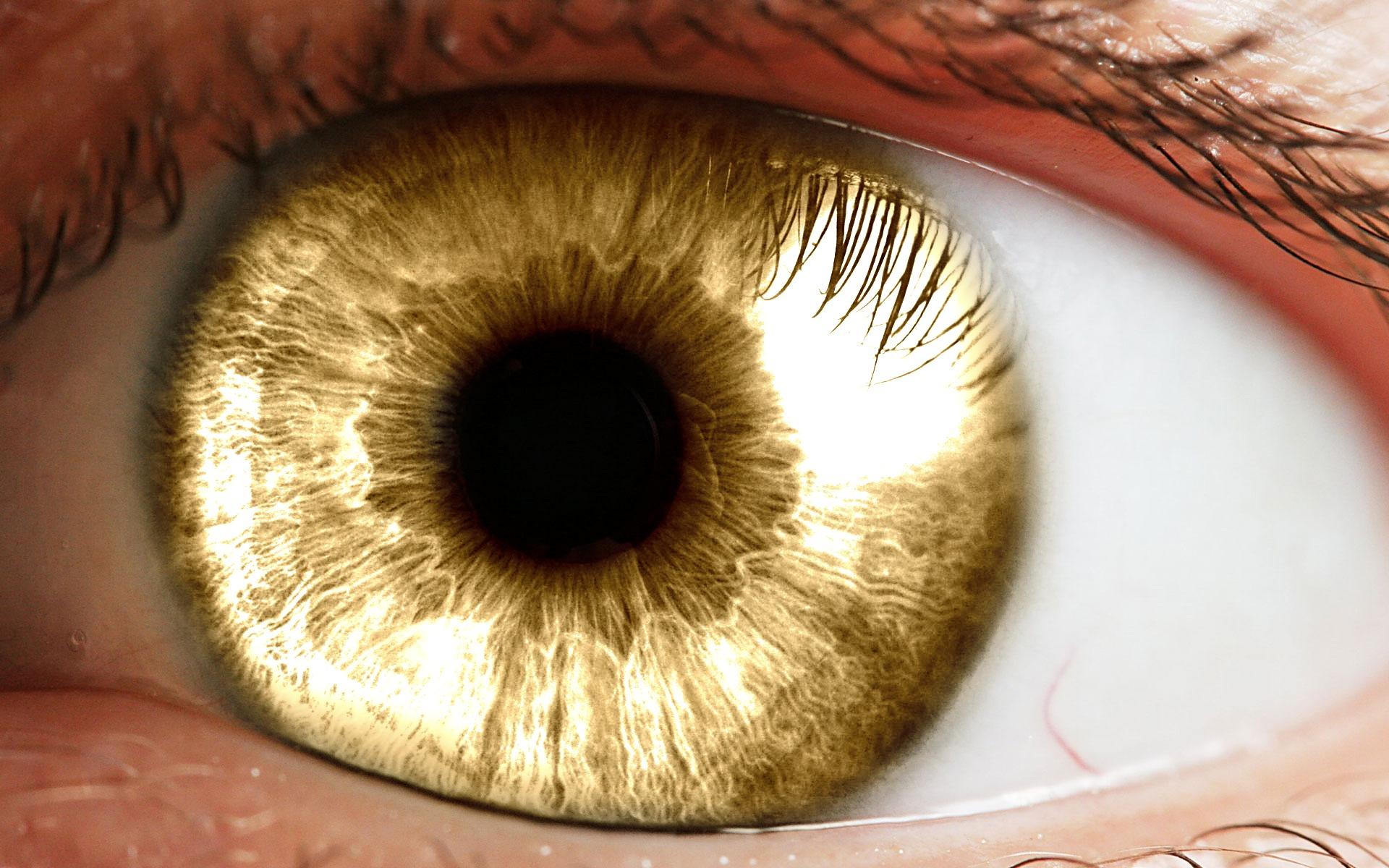 yellow eyes human - photo #24