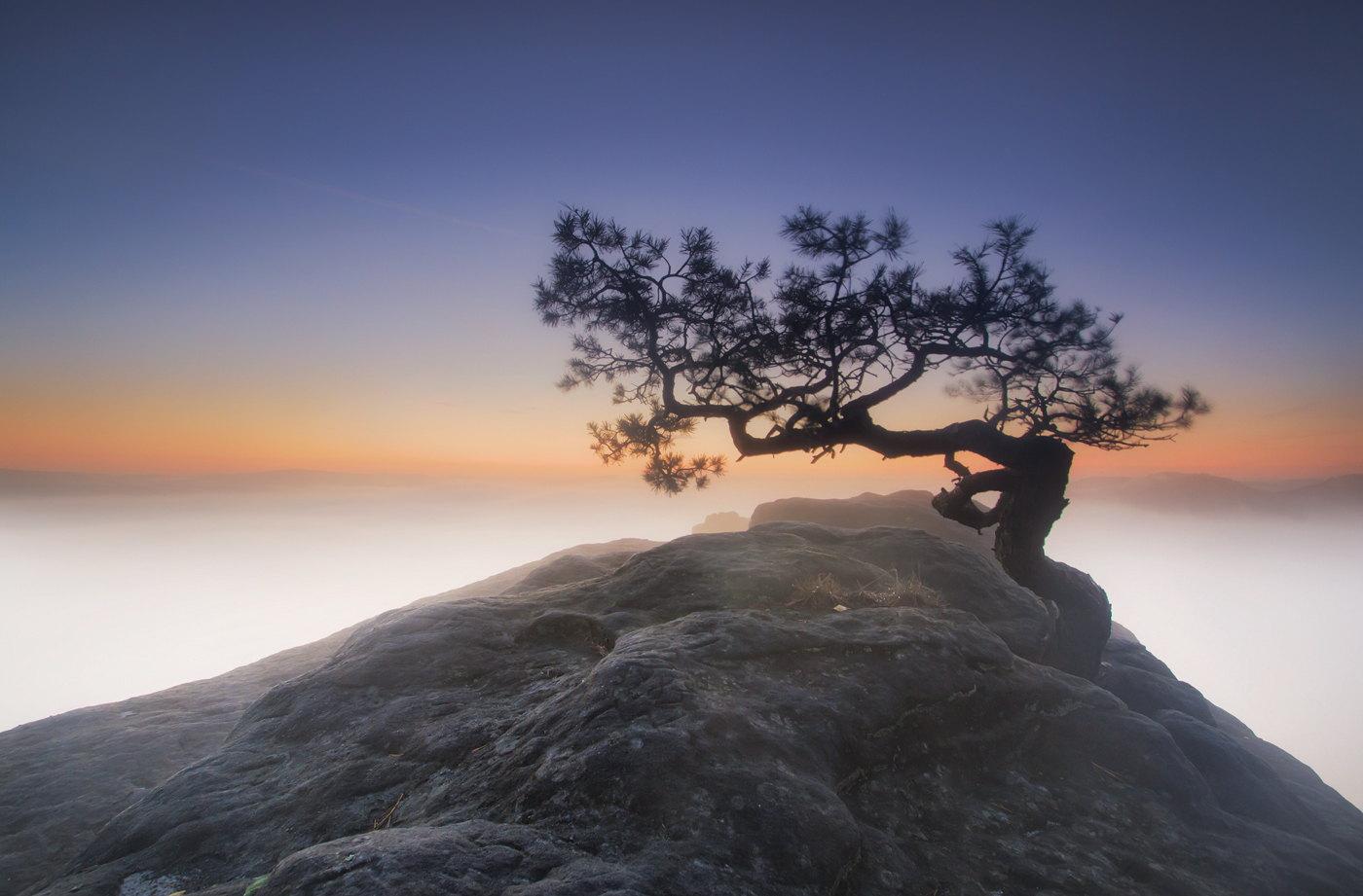 landscape | Mark's Photo Odyssey